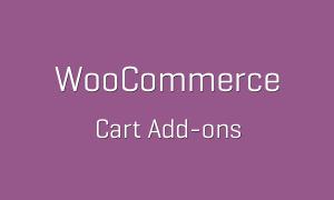 tp-66-woocommerce-cart-add-ons