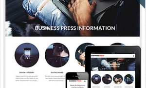 business-press-wordpress