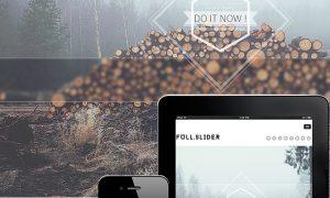 full-slider-theme-responsive