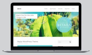 baylys-wordpress-theme_slider01