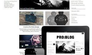pro-blog-responsive-theme