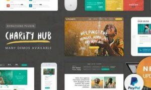 charity-foundation-charity-hub-wp-theme
