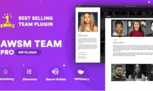 the-team-pro-team-showcase-wordpress-plugin
